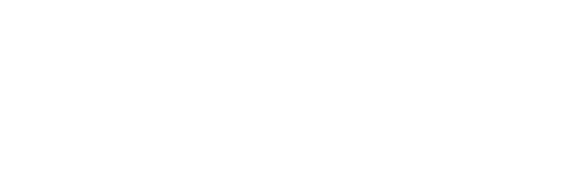 Steuer Group